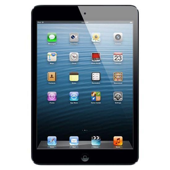 Picture of iPad 2 Mini Repair